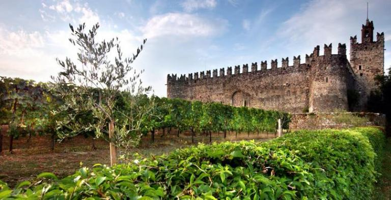 Franciacorta Castello di Passirano e filari