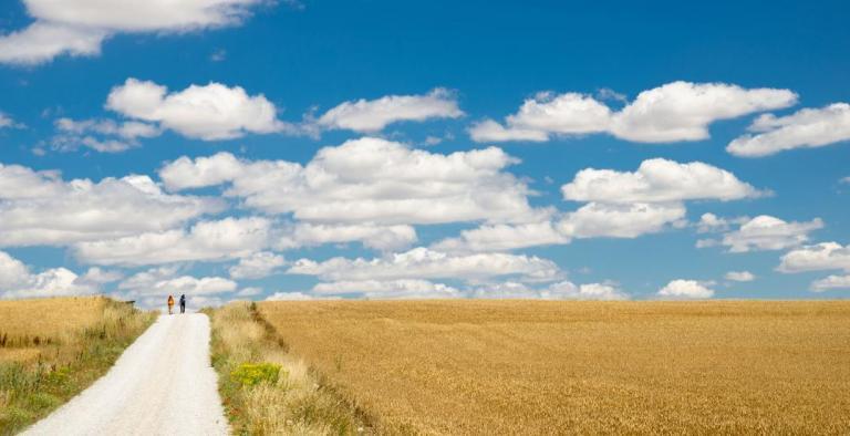 Cammino Santiago de Compostela - 119 km da Vilalba